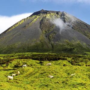 Azoren: Vulkan Pico