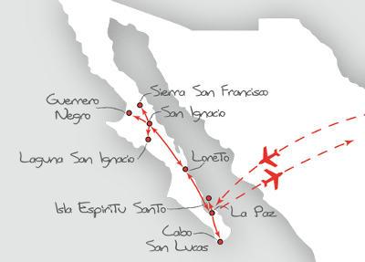 Island: Karte und Tourenverlauf Whale Watching Baja California