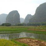 Karstberge Reisfelder