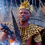 cr-suedafrika-lion4you-zulu-koenig