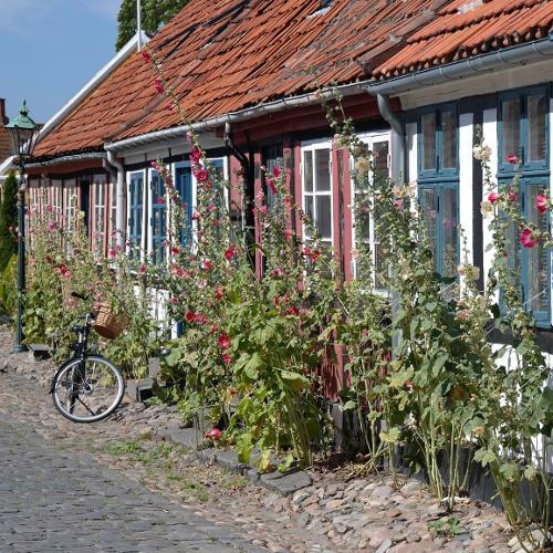 bornholm fachwerkhaus