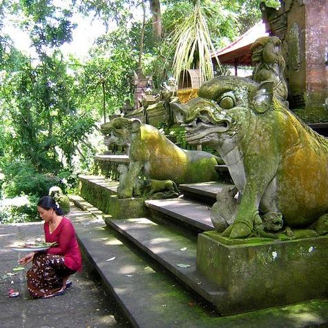 Bali: Affentempel