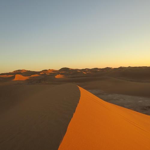 Sandwüste Dünen