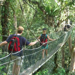 Canopy Walk in Poring