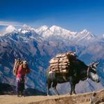 naturreisen-trekking-helambu-langtang