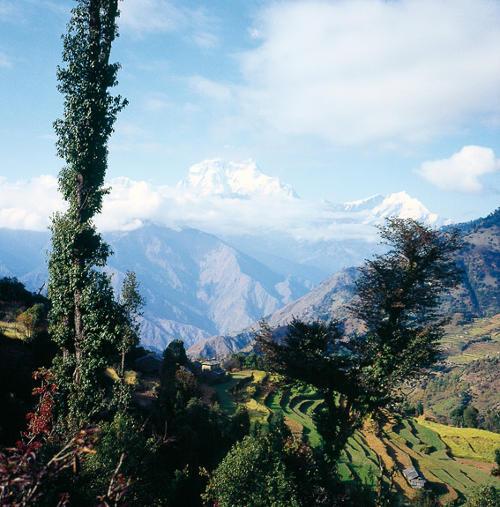 Blick zum Annapurna