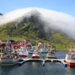 Lofoten Fischereihafen