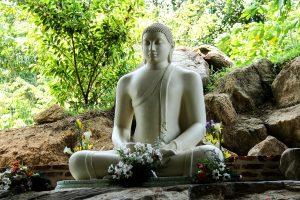 Sri Lanka - Mahamevnawa Buddha