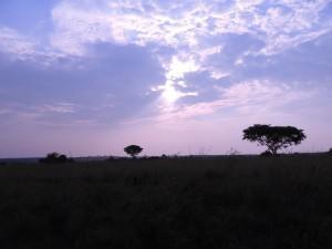 Landschaft in der Dämmerung (Uganda )