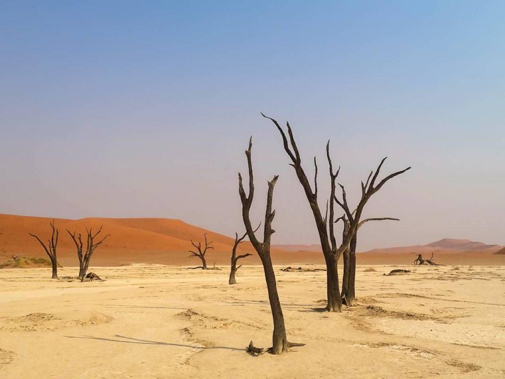 Wüstenreisen - die Namib-Wüste in Namibia