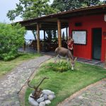 "Eco-Resort ""Mucumbli"""