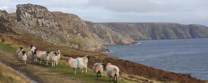 Wandern auf den Äußeren Hebriden