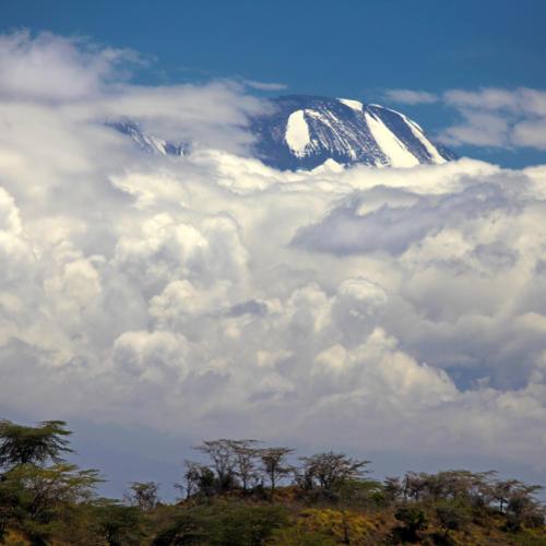 Kilimanjaro in Wolken