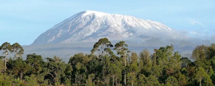 Kilimanjaro - Safari - Sansibar